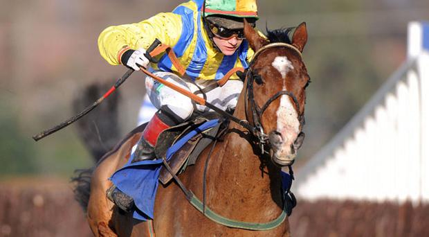 Shakervilz, winning under Paul Townend at Leopardstown, is heading for Sunday's Powers Gold Cup