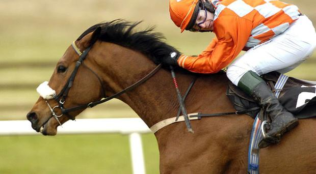 Conna Castle: on course for the Aintree Grand National
