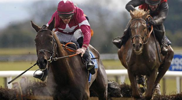 Magnanimity, with Davy Russell (left), on their way to winning the Bobbyjo Bar Festival Novice Hurdle at Fairyhouse yesterday. Photo: PA