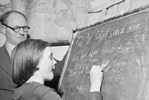 A school girl translation Irish into English. Photo: Getty Images