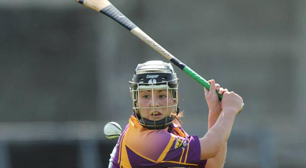 Una Leacy: found the net for Wexford.