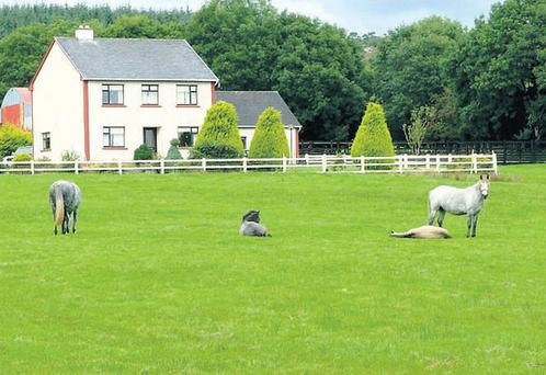 SHADES OF GRAZE: The five-acre holding has been used mainly as an equestrian property and includes a sand arena and outbuildings.