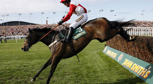 Kalahari King is to be confirmed by trainer Ferdy Murphy for Tuesday's Boylesports.com Champion Chase. Photo: Getty Images