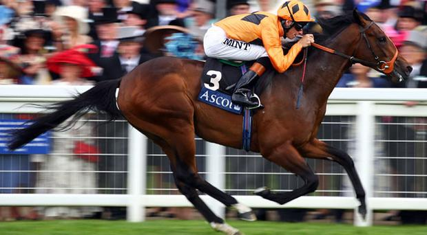 Trainer Richard Hannon expects a different outcome when Canford Cliffs contests the English 2,000 Guineas on Saturday week. Photo: Getty Images
