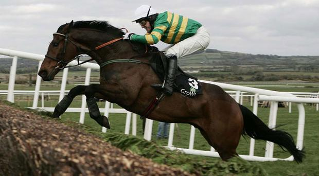 Tony Mc Coy and Kempes winner of the Growise Champion Novice Chase. Photo: Getty Images