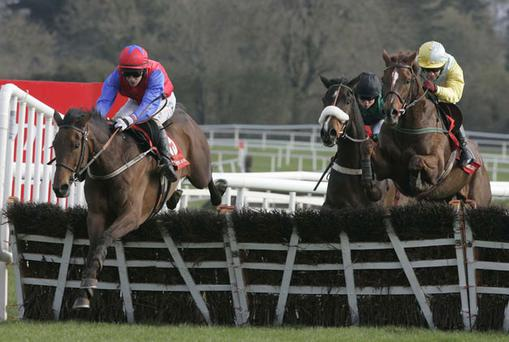 Quevega (left), with Paul Townend up, on the way to winning the Ladbrokes.com Hurdle at Punchestown yesterday. Photo: Getty Images