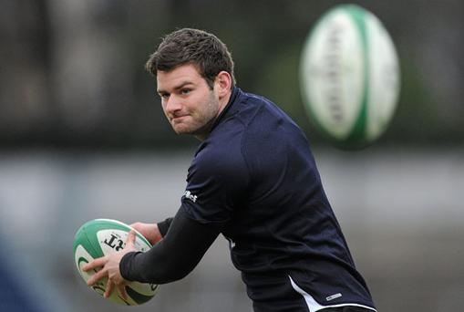 Michael Cheika will be expecting Fergus Mcfadden to lead his inexperienced Leinster team into battle tonight.
