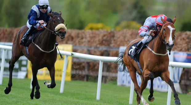 The John Oxx-trained Roses For The Lady, with Fran Berry up, pulls clear of English raider Merchant Of Dubai to capture yesterday's Navan feature, the Vintage Crop Stakes.