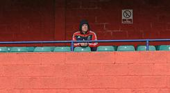 Paul O'Connell pictured watching his team-mates train from a stand at Musgrave Park - Munster have been given the go-ahead for a new West Stand at the ground