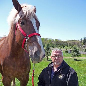 Jerry Gilbert stands next to Big Jake, the world's tallest horse
