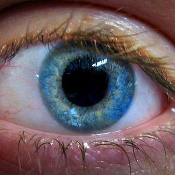 A study suggests that when a person blinks, it is a sign that their mind is wandering