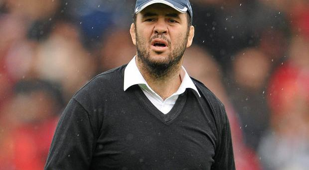 Of Michael Cheika's 13 derby games in charge of Leinster against Munster, eight have produced a victor in blue.