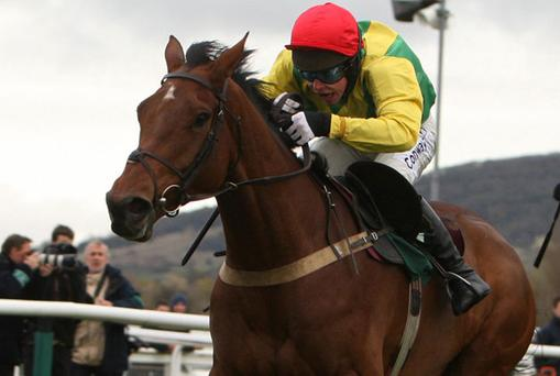 Loosen My Load winner at Cheltenham last season. Photo: PA