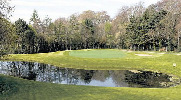 The new-look sixth hole at the revamped Marlay Park par 3 course.
