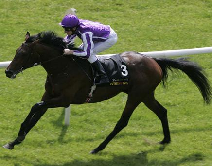 Fame and Glory ridden by Johnny Murtagh. Photo: Getty Images