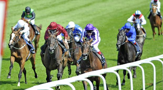 Fame And Glory and Johnny Murtagh (far right) surge away from Sariska (centre) to land yesterday's Coronation Cup