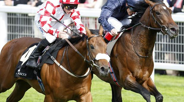 Marine Commando (L) edges out Petronius Maximus in Ascot's finale yesterday. Photo: PA