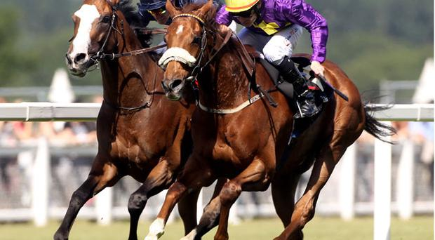 Pat Smullen on Rite of Passage (R) winner of Ascot's Gold Cup. Photo: Getty Images