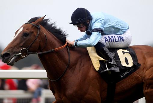 Harbinger ridden by Ryan Moore. Photo: Getty Images