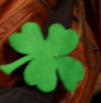 Medics found a four-leaf clover on the back of a young driver who survived a crash