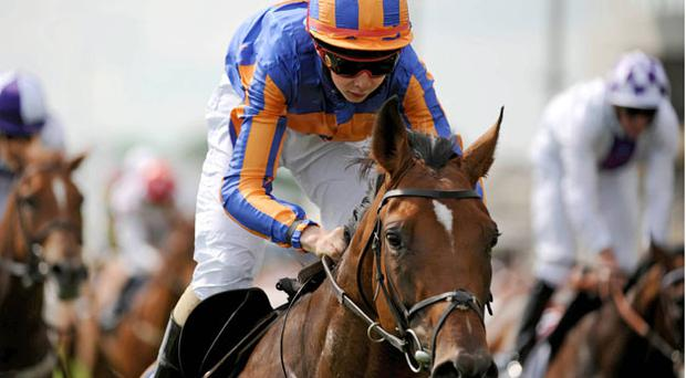 Zoffany, here winning at the Curragh, can strike again at Leopardstown this evening.