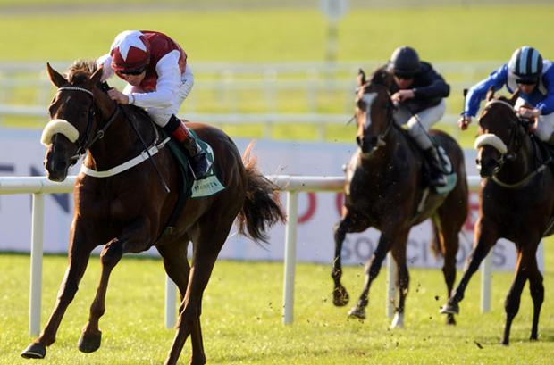 Casamento eases clear under Pat Smullen at the Curragh