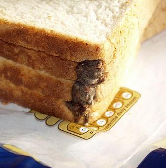 A mouse found in a loaf of Hovis Best of Both bread bought in Oxfordshire