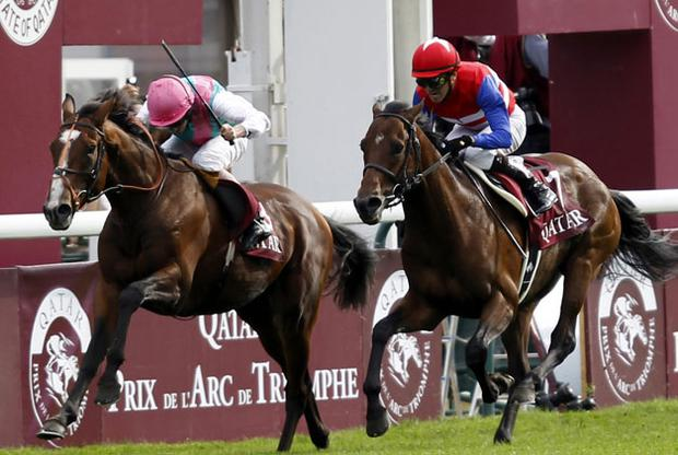Workforce and Ryan Moore (left) manage to hold off the challenge of Japanese raider Nakayama Festa to land yesterday's Prix de l'Arc de Triomphe. Photo: Reuters