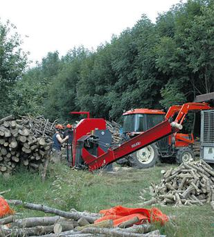 Prospective forestry owners are looking at the possibility of buying an established plantation of 10 years or more, allowing them to get a faster return on their money