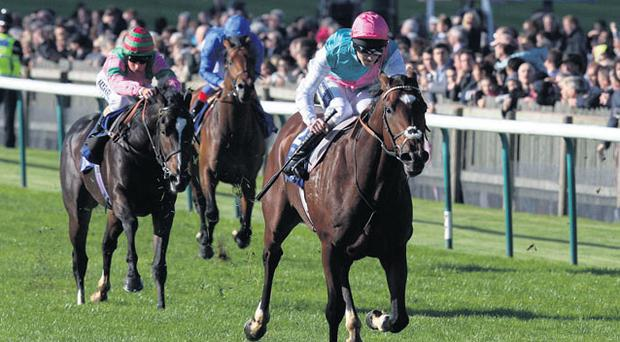Frankel, ridden by Tom Queally, eases clear to win the Dubai Dewhurst stakes in fine style at Newmarket yesterday.