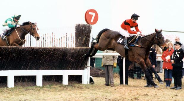 Dawn Run, with Jonjo O'Neill on board, jumps the last on the way to victory in the 1986 Cheltenham Gold Cup - one of Paddy Mullins' finest training achievements.