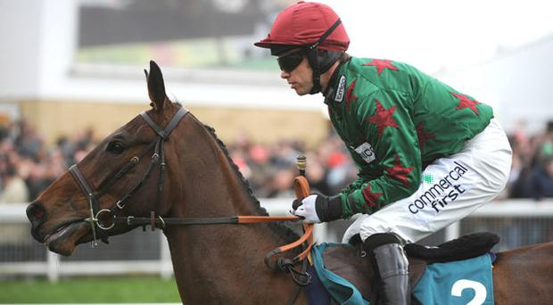 Calgary Bay represents excellent value at up to 9/1 for this afternoon's Bet365 Charlie Hall Chase at Wetherby