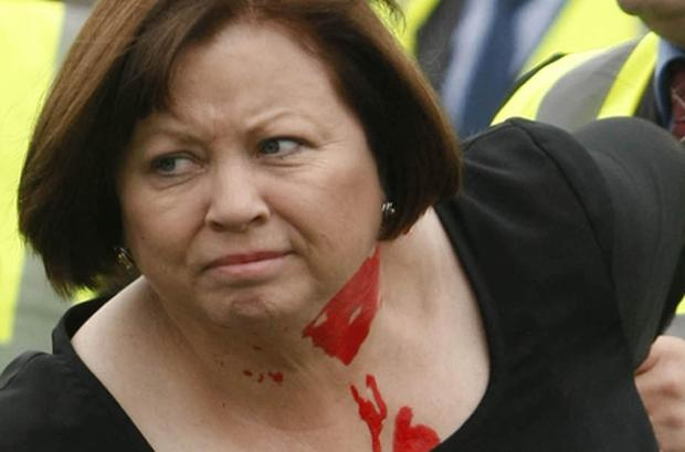 Pelted with paint: Health Minister Mary Harney. Photo: PA