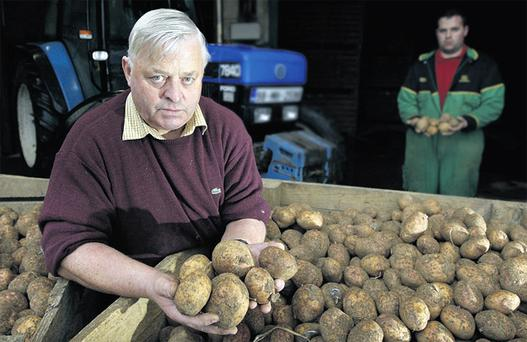 Potato grower Paudge Howard, seen with his son, Ian, says he is prepared to go to jail to get the €27,000 owed to him by the company that went bust