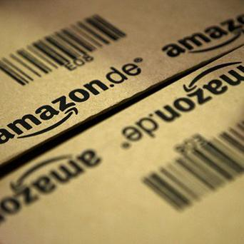 Amazon is no longer selling a self-published guide for paedophiles