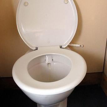 Some young people believe toilet seats can give you cancer, according to a new poll