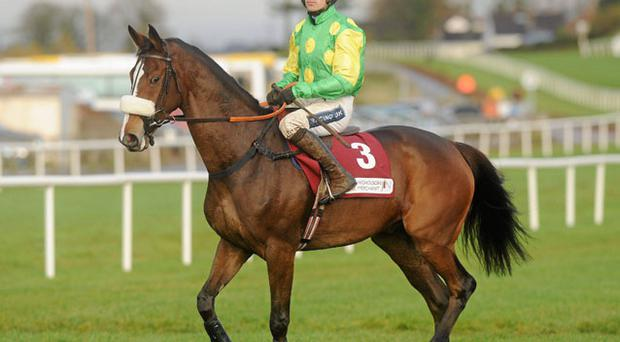 Kauto Star and Ruby Walsh before winning at Down Royal earlier this month, but the gelding won't be going to Newbury. Photo: Oliver McVeigh / Sportsfile