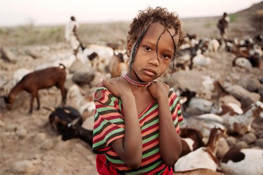 A girl with her family's herd of goats in Fentale, Ethiopia, where concerns have been raised about the misuse of aid