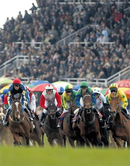 As the recession has hit the sector hard, Fairyhouse has met the value-for-money expectations of racegoers by offering cut-price entry fees for the winter festival calendar