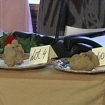 Billionaire Stanley Ho bid 330,000 dollars for two truffles, including one weighing nearly a kilogram (AP)