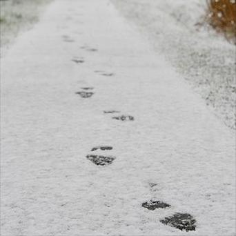 A trail of footprints in the snow helped police track a teenage burglar