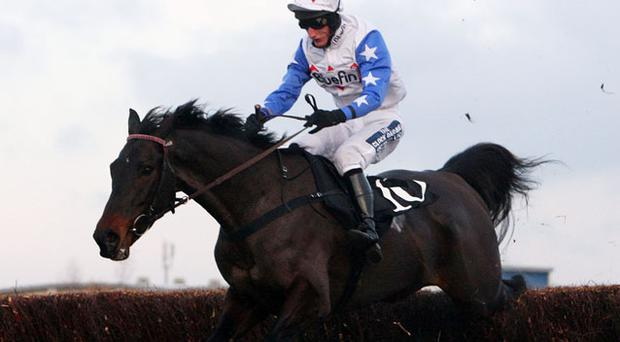 Hennessy Gold Cup winner Diamond Harry. Photo: PA