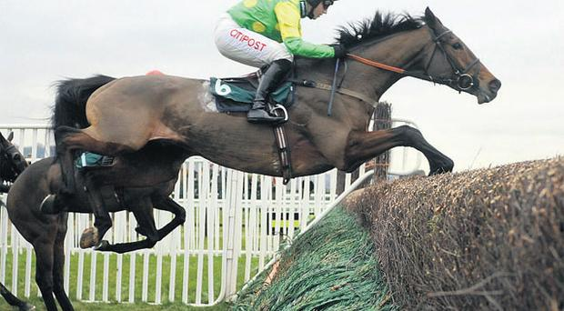 Master Minded in full flight in the Tingle Creek at Cheltenham yesterday