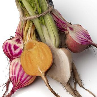 A range of unusually coloured beets have been launched in time for the Christmas season