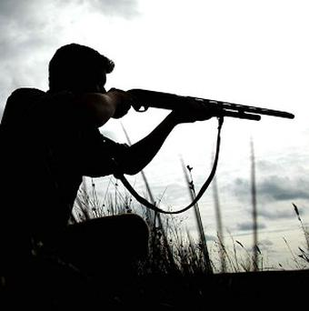 A disabled farmer trying to kill a fox accidentally shot and wounded two burglars