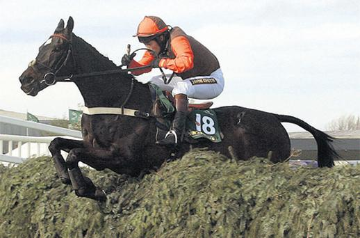 Sam Waley-Cohen shows his skills by guiding Katarino to victory in the prestigious Aintree Fox Hunters Chase