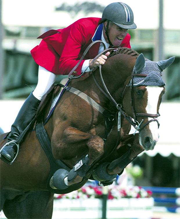 FlexibIe (by Cruising ISH), bred by Catherine and Edward Doyle, was the the highest placed Irish Sport Horse in the WBFSH eventing rankings for three consecutive years