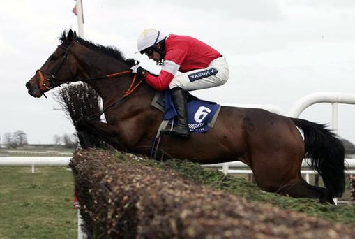 Psycho ridden by Ruby Walsh. Photo: Getty Images