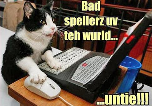 An 'lolcats' example from the Cheezburger site