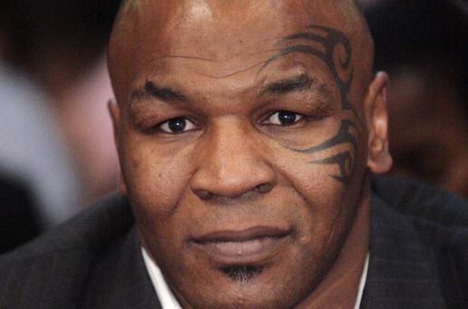 Mike Tyson: 'the pigeon was the first thing I ever loved in my life'. Photo: Reuters